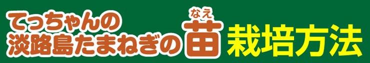 てっちゃんの淡路島たまねぎ栽培方法