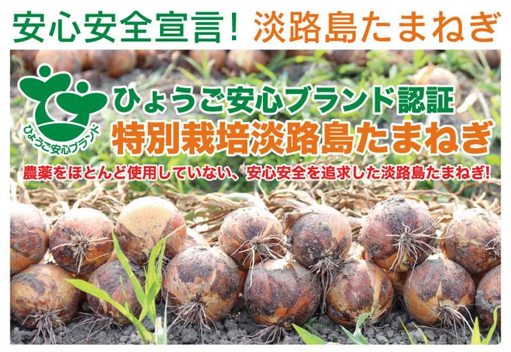 ひょうご安心ブランド特別栽培淡路島たまねぎ