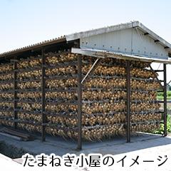 たまねぎ小屋のバターサブレ03