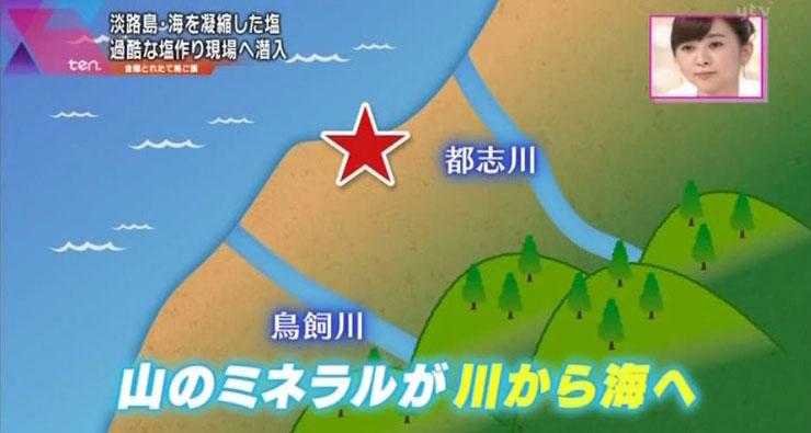 山のミネラルが川から海へ